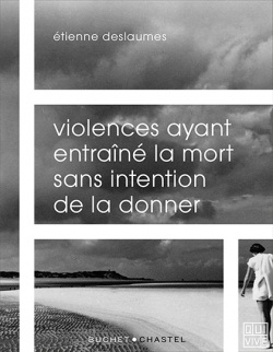 Violences ayant entraîné la mort sans intention de la donner -